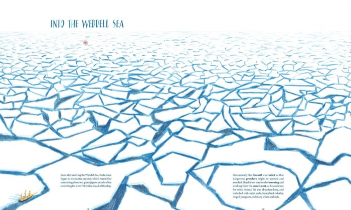 weddellsea